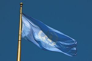 FNflagga Foto: Makaristos CC